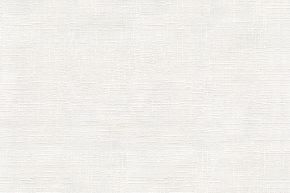 Astor Paint-03