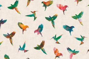 Freedom Birds 14253-1